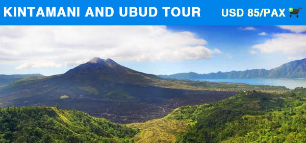 Kintamani and Ubud Tour