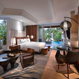 Private Plunge Pool Luxury Room